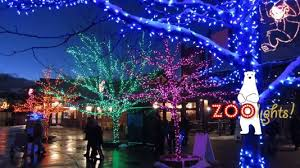 zoo lights at hogle zoo hogle zoo lights discounted admission utah sweet savings