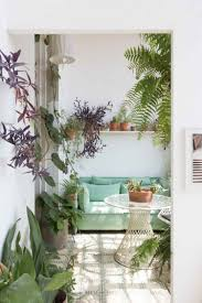 greenterior plant loving creatives u0026 their homes plants
