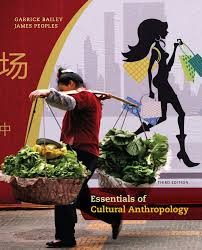 essentials of cultural anthropology 3rd edition 9781133603566