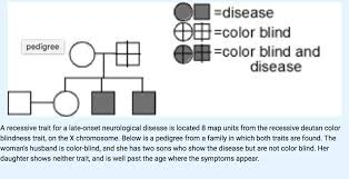 Chromosome Color Blindness What Is The Probability Ii 2 Is A Carrier Of The D Chegg Com