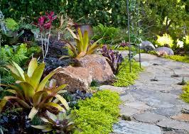 Tropical Rock Garden 213 Best Tropical Garden Images On Pinterest Tropical Gardens