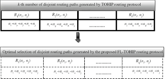 fl tohip fractional lion algorithm to topology hiding multipath