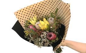 australian native plant australian native flowers tynte