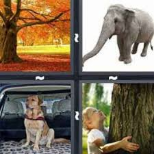 5 letters archives answers for 4 pics 1 word
