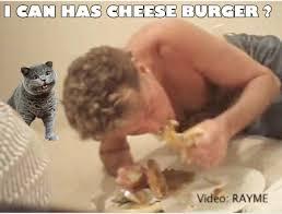 David Hasselhoff Meme - image 8153 david hasselhoff drunk know your meme