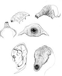 alien parasite designs by gwarmor13 on deviantart