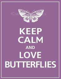 keep calm and butterflies b print featured in