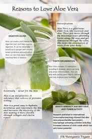 7 best aloe vera for inner health images on pinterest aloe vera