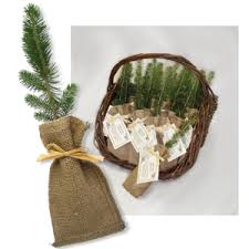 Memorial Service Favors Memorial Gifts Funeral Gifts Unique Sympathy And Affordable Gifts