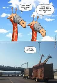 Meme Giraffe - poor giraffe meme by alexcavaliere62 memedroid
