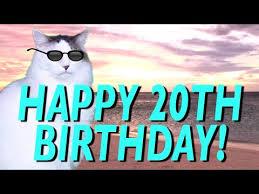 20th Birthday Meme - happy 20th birthday epic cat happy birthday song youtube