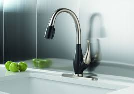 uncommon delta leland pull down kitchen faucet review tags delta