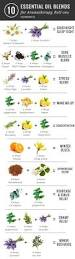 Good Combination Best 25 Essential Oil Combinations Ideas On Pinterest Essential