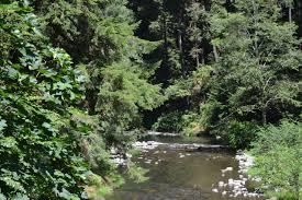 Fall Creek Falls Map Creek National Recreation Trail
