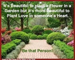 funny gardening quotations container gardening ideas