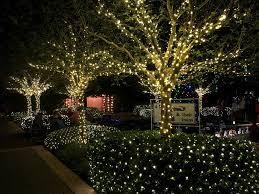 Botanical Gardens Christmas Lights by Largo Florida Botanical Gardens Holiday Lights In The U2026 Flickr