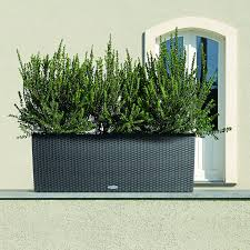 Self Watering Wall Planters Rectangle Lechuza Trio Cottage 30 Self Watering Resin Planter
