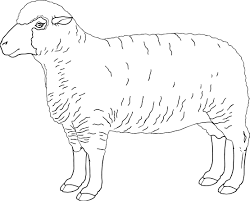 sheep coloring pages david shepherd coloringstar