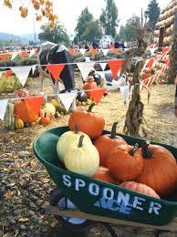 halloween on spooner street happiness is october 2013