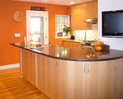 orange kitchen ideas orange wall modern kitchen boston by cw design llc