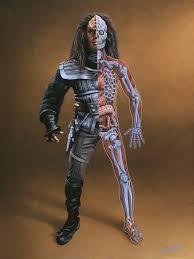 Human Anatomy Martini Klingon Memory Alpha Fandom Powered By Wikia