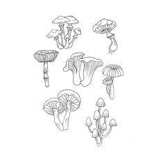 25 mushroom tattoos ideas alice wonderland