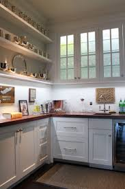 beach house kitchen ideas 217 best kitchen remodel images on pinterest dream kitchens