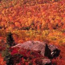 blue ridge parkway fall festivals usa today