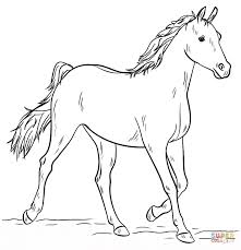 arabian mare coloring free printable coloring pages