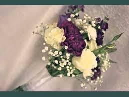 Purple Carnations Pretty Carnation Flower Beautiful Picture Set Purple Carnation