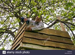 building a treehouse around an apple tree using a cordless