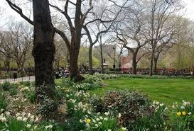 the top 10 secrets of tompkins square park in nyc untapped cities