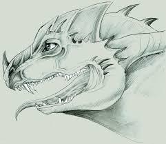 dragon head pencil sketch by mein ak on deviantart