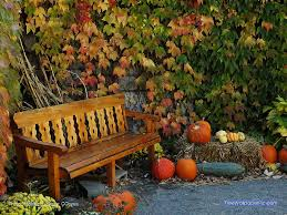 fall pictures with pumpkins for desktop just a little talk this thursday just a little talk