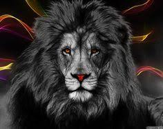 23 tribal lion body tattoos images body