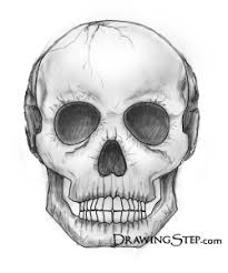 how to draw skulls by