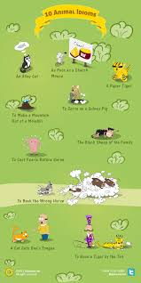 10 animal idioms and what they mean kaplan blog