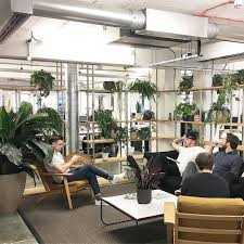 opendesk greening your office how to bring the outside in