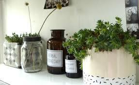 plantes bureau plante pour bureau source d inspiration mon coin plantes et mon