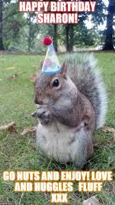 Happy Birthday Love Meme - happy birthday sharon go nuts and enjoy love and huggles fluff xxx