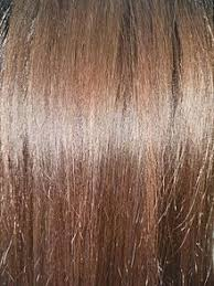 images of hair brown hair wikipedia