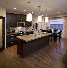 dark cabinet kitchens dark cabinet kitchen designs inspiring well ideas about dark kitchen