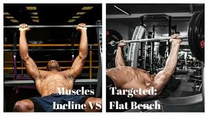 Muscles Used When Bench Pressing Chest Day 101 Incline Vs Flat Bench My Fit Regimen