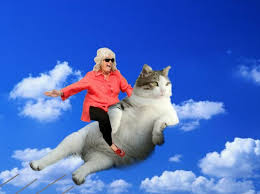 Paula Deen Butter Meme - meme watch every day is lazy caturday for this laid back cat