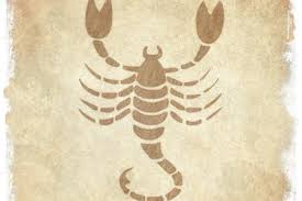 Scorpio Man Buzzle