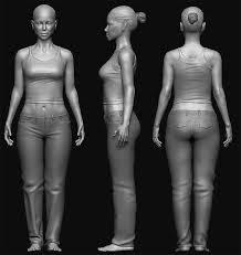 Female Anatomy Reference Female Zb 02 Jpg 670 710 Anatomy 3d Scanes Female