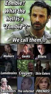 What The Hell Is A Meme - thewalkingdeadaddict on walking dead twitter and memes
