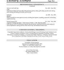 download chef resume samples haadyaooverbayresort com