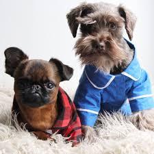 quality dog fashion by fabdog dog pjs dog coats dog sweaters