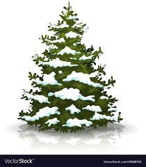 christmas tree with snow christmas pine tree with snow royalty free vector image